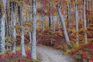 Peinture, arbres dans une forêt