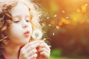 Petite fille qui souffle sur fleur